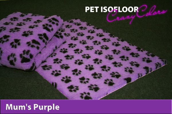 PET ISOFLOOR SX Mum's Purple